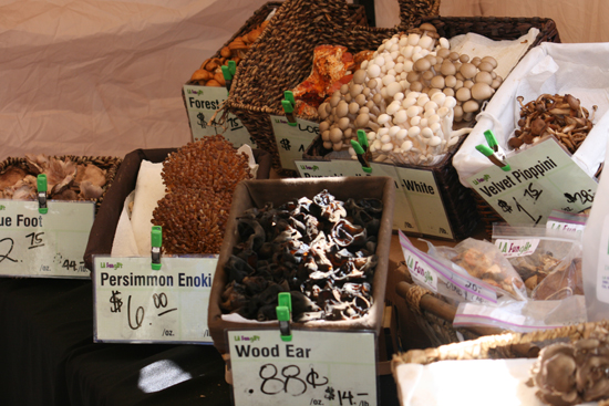 Mushrooms at Larchmont Farmers Market