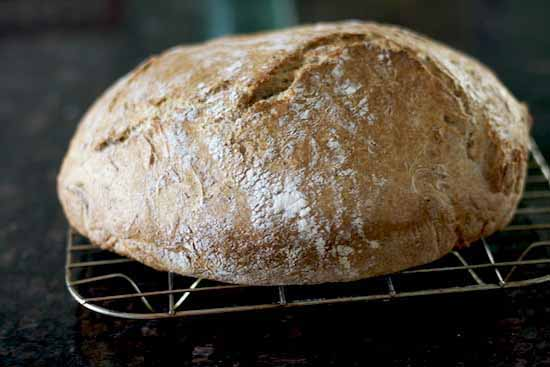 Whole Wheat No Knead Bread