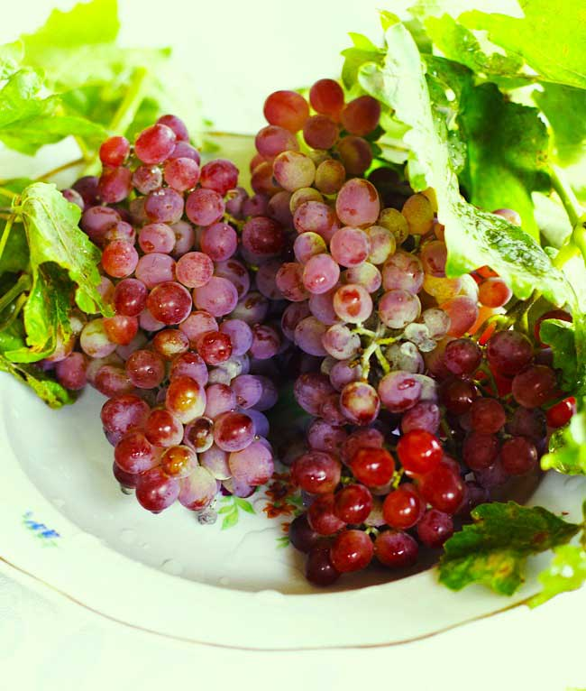 AZ Cookbook - Grapes