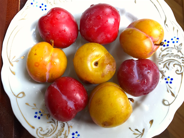 Fresh plums from the market in Baku | AZ Cookbook