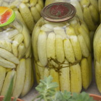 White Cucumber Pickles | AZCookbook.com
